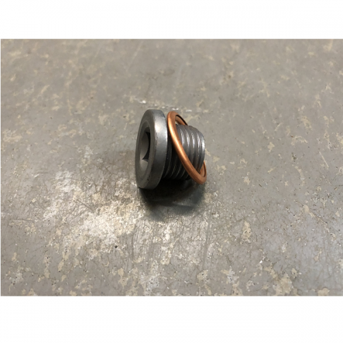 Renault Gearbox Sump Plug With Washer Various Models